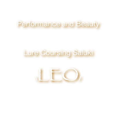 Dedicated 